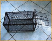 Mouse Trap Cages