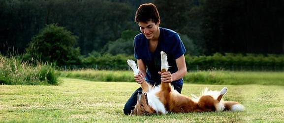 Animalcity.gr - Ο σκύλος ίσως είναι το μυστικό για να χάσετε κιλά