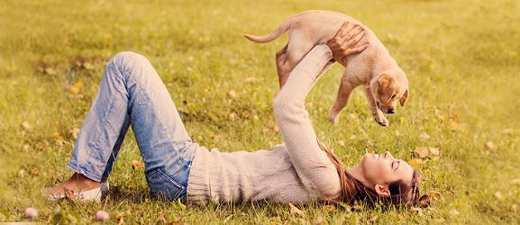 Animalciy.gr - Οι σκύλοι ζουν τη στιγμή