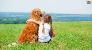 A golden retriever dog sitting next to a girl representing how pet ownership helps reduce anxiety in a child