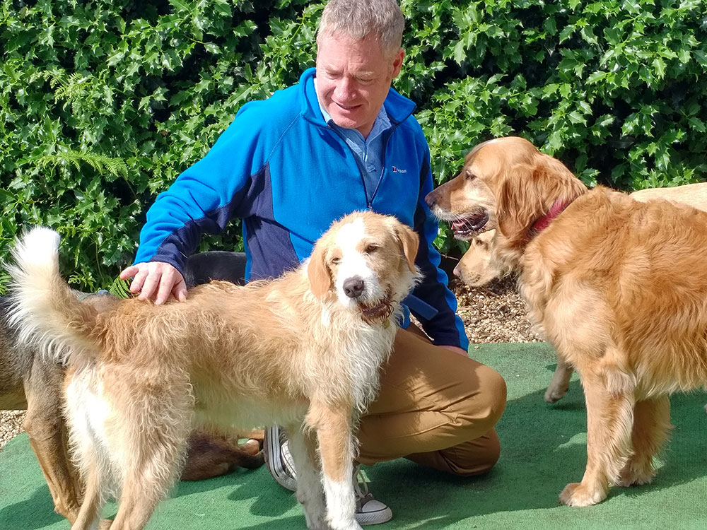 On the right is Golden Retriever Alfie, who travelled with us last year. He's a permanent resident, and a key part of the welcoming committee at the café. Bruno from our latest trip is on the left.