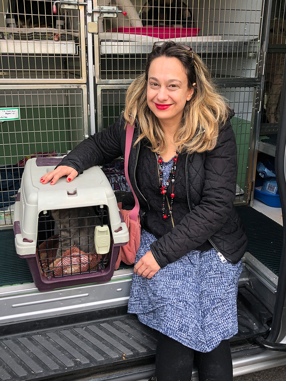 Nine Lives Greecearrived with two kittens and a cat who've been adopted by Michelle in England