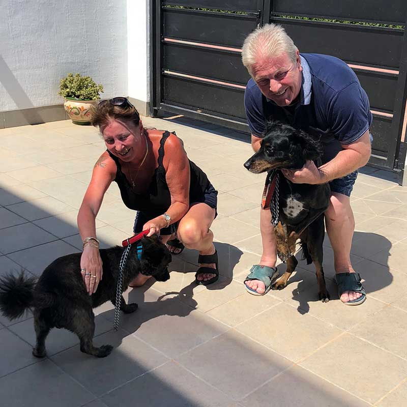 Mandy with Tojo and Sam with Rocky
