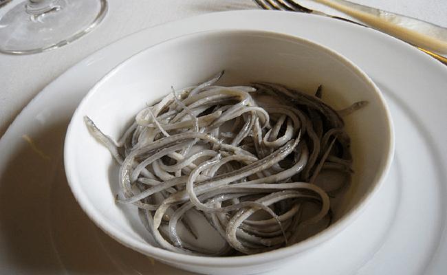 El enigma entre angulas y anguilas  Animal Gourmet