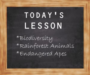 Teach people about animals.