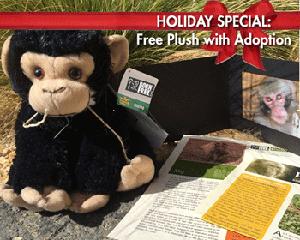 Born Free Adopt a Primate