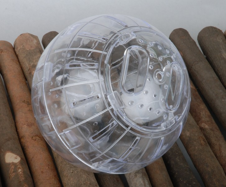 BOULE DEXERCICE POUR HAMSTER NAIN  SOURIS  Animaloo
