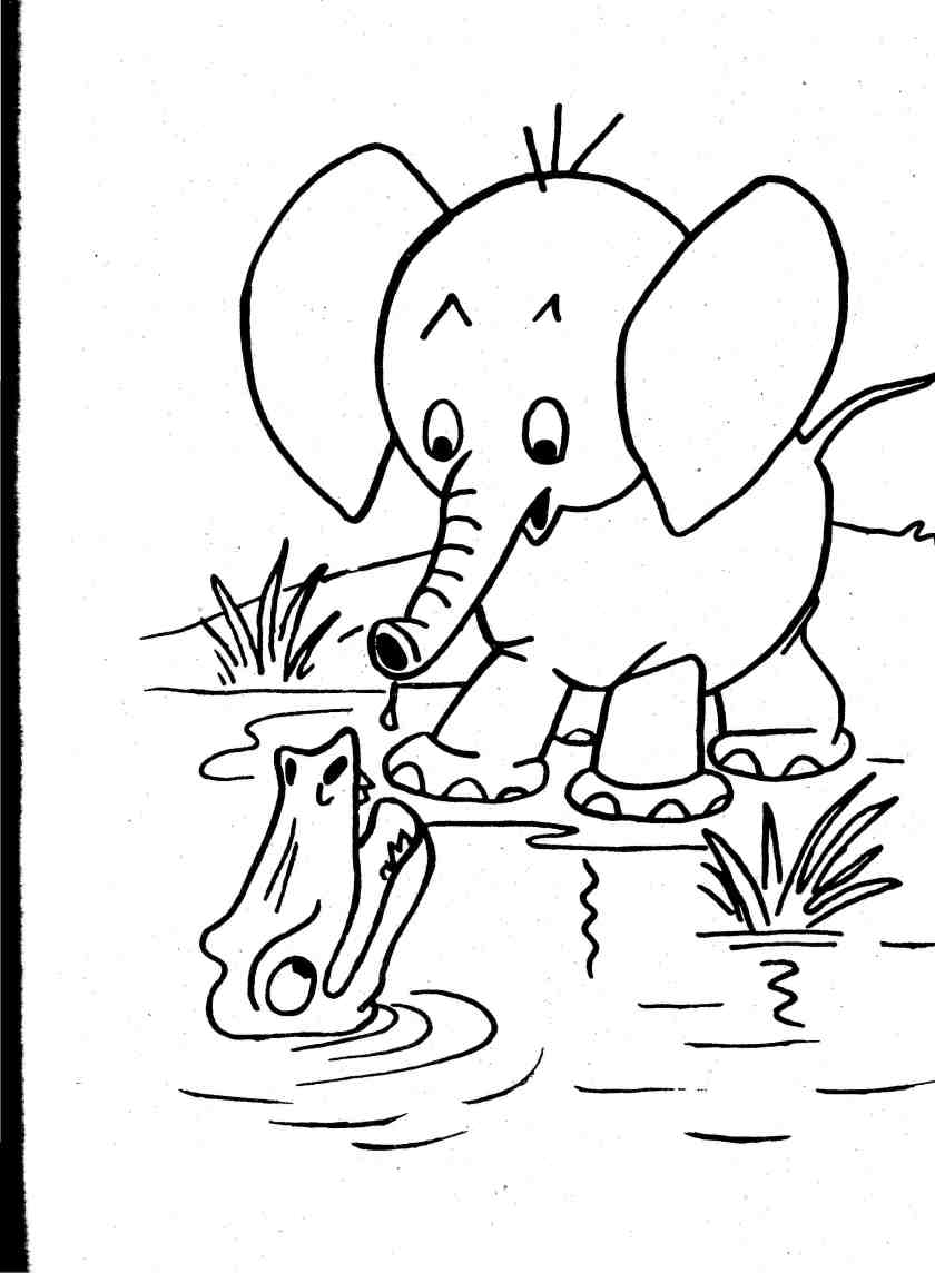 baby wild animals coloring pages coloring page books and etc
