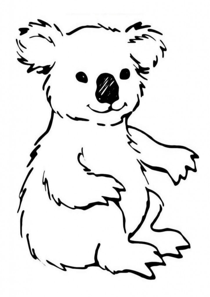 Koala Coloring Pages for Kids Images - Animal Place
