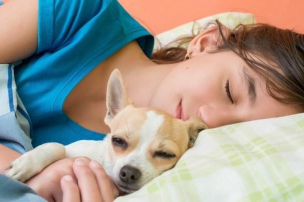 τότε σημαίνει ότι σας αγαπάει πολύ! Σκύλος Εσείς το γνωρίζατε; Εάν ο σκύλος σας κάνει κάποιο από ΑΥΤΑ τα 9 πράγματα