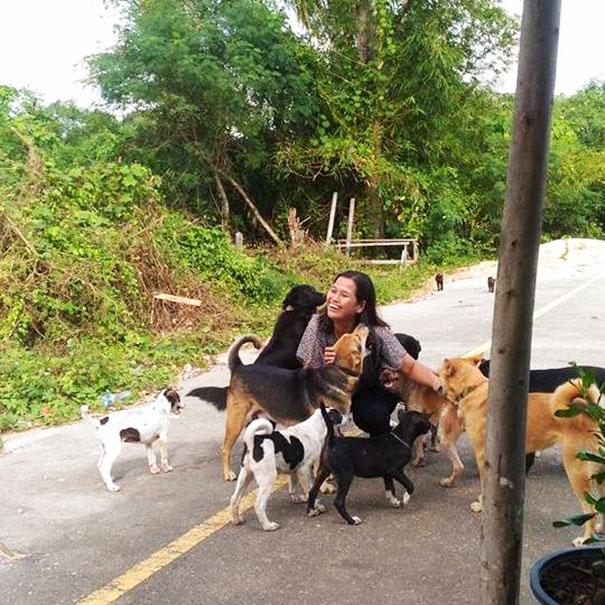 Αδέσποτος σκύλος δεν σταματάει να φέρνει δώρα στην γυναίκα που τον ταΐζει Αδέσποτος σκύλος αδέσποτος αδέσποτοι σκύλοι αδέσποτο αδέσποτη