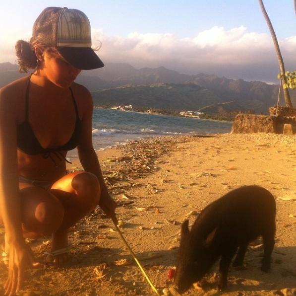 γουρούνι γουρουνάκια αγαπάει να κάνει σερφ Γουρουνάκι αγαπάει να κάνει σερφ και κολυμπάει πιο γρήγορα από όλους! γουρουνάκι