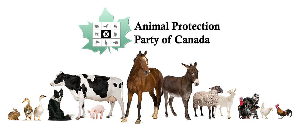 Animal Protection Party