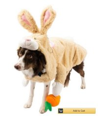 Adorable Dogs and Cats Dressed Up for Easter