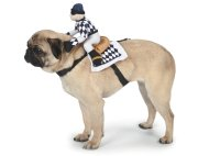 15 Funniest Dog Costume Ideas for Halloween | Animals Zone