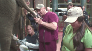 Still image from a Seattle Times video.