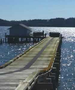 The former orca capture dock, now used by a shellfish farm. (Beth Clifton photo)