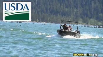 USDA Wildlife Services gunners. (SHARK photo)