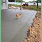 What Do Backyard Chickens and Factory Farm Chickens Have in Common?