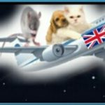 "What Brexit means for ""pet passports"" & lab animals"