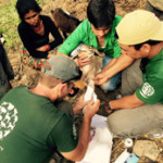 Nepal earthquake update from Jan Salter,  founder,  KAT Centre