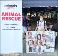 Animals Lebanon rescue tent
