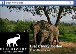Black Ivory Coffee copy