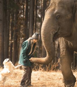 From right to left:  Tarra,  Carol Buckley,  & Bella the dog.  (Elephant Aid International photo)