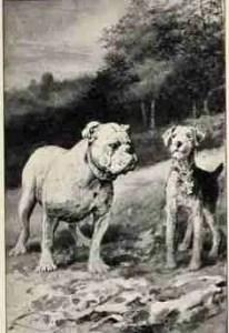Illustration by William Van Dresser.