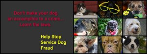Facebook (stop service dog fraud)