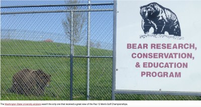 What the WSU press office wants us to know about the WSU Bear Center. (WSU photo)