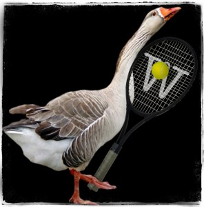 Goose with a tennis rackett