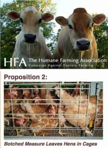 HFA web page
