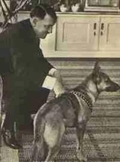 Hitler & Blondi