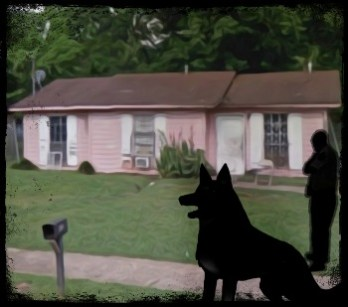 K-9 with cop at house