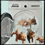 Laundering pit bulls with a washing machine