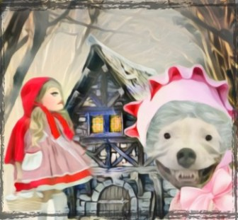 Little Red Riding Hood with pit bull 2