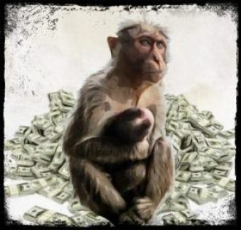 Macaque and baby sitting on money