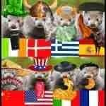 End to Irish & Greek mink farming expected after Danish & Dutch culls