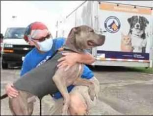 Montgomery County Animal Shelter