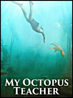My Octopus Teacher movie poster