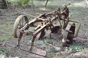 Ignoring the importance of animal welfare in agricultural development is an attitude as obsolete as this plow,  abandoned circa 75 years ago.  (Beth Clifton photo)