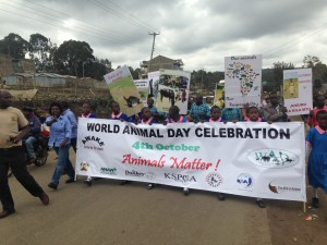 Photo2. Matching for the Animals in World Animal Day - Animals Matter