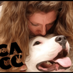 Chicago animal control chief, a pit bull advocate, attacked by pit bull