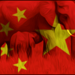 China halts ivory sales, but leads the world in live elephant imports