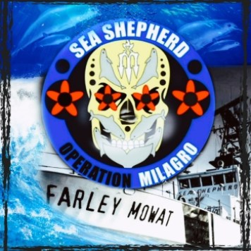 Sea Shepherd Farley Mount and vaquitas