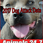 57 dog attack deaths & 645 disfigurements in 2017, led by pit bulls