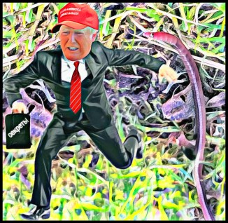 Trump runs from Palouse worm |