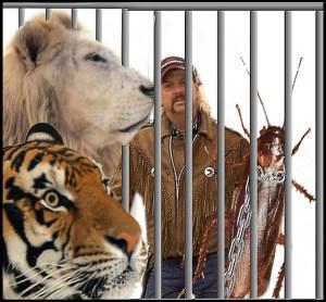 Joe Exotic tiger lion cockroach