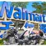 Wet markets or Walmart? Animal consumption & the coronavirus
